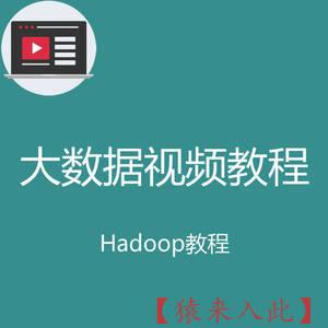 大数据存储类hadoop3 hive es等视频教程之大数据数据存储视频开发教程